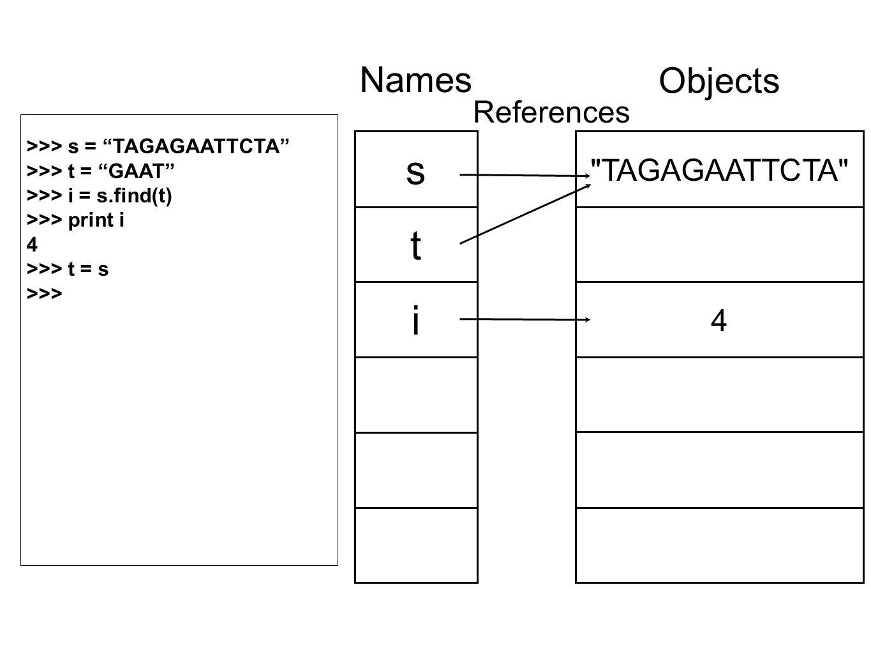 TAGAGAATTCTA 4 Objects s t i Names References >>> s = TAGAGAATTCTA >>> t = GAAT >>> i = s.find(t) >>> print i 4 >>> t = s >>>
