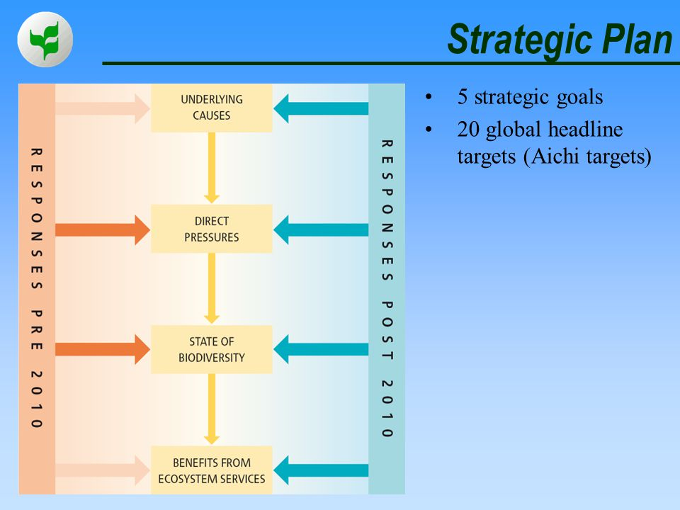 Strategic Plan 5 strategic goals 20 global headline targets (Aichi targets)