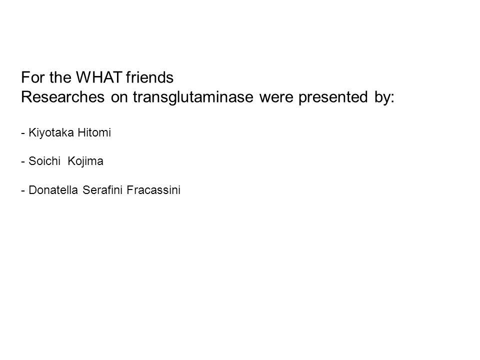 For the WHAT friends Researches on transglutaminase were presented by: - Kiyotaka Hitomi - Soichi Kojima - Donatella Serafini Fracassini