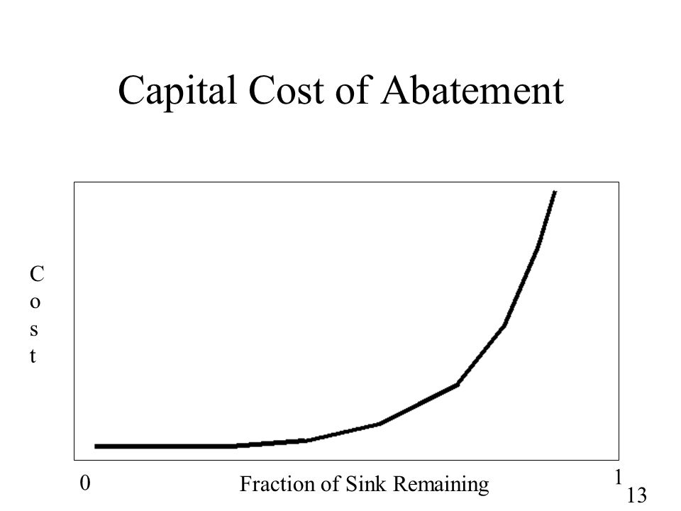 13 Capital Cost of Abatement 0 1 Fraction of Sink Remaining CostCost