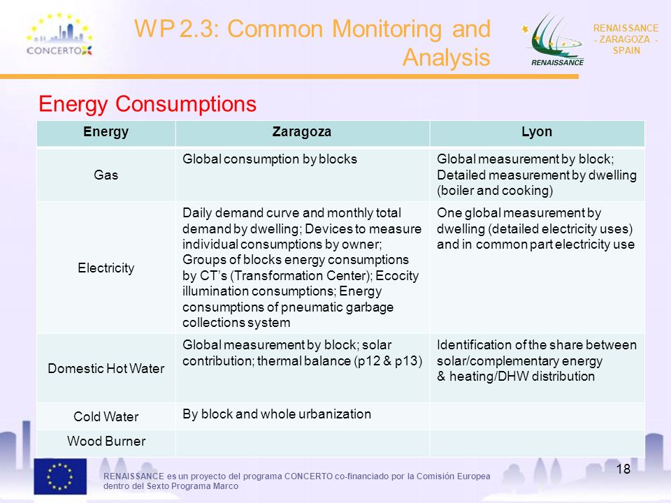RENAISSANCE es un proyecto del programa CONCERTO co-financiado por la Comisión Europea dentro del Sexto Programa Marco RENAISSANCE - ZARAGOZA - SPAIN 18 WP 2.3: Common Monitoring and Analysis EnergyZaragozaLyon Gas Global consumption by blocksGlobal measurement by block; Detailed measurement by dwelling (boiler and cooking) Electricity Daily demand curve and monthly total demand by dwelling; Devices to measure individual consumptions by owner; Groups of blocks energy consumptions by CTs (Transformation Center); Ecocity illumination consumptions; Energy consumptions of pneumatic garbage collections system One global measurement by dwelling (detailed electricity uses) and in common part electricity use Domestic Hot Water Global measurement by block; solar contribution; thermal balance (p12 & p13) Identification of the share between solar/complementary energy & heating/DHW distribution Cold Water By block and whole urbanization Wood Burner Energy Consumptions