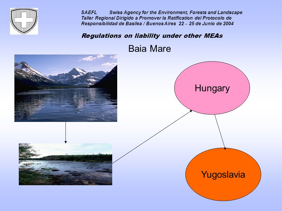 SAEFLSwiss Agency for the Environment, Forests and Landscape Taller Regional Dirigido a Promover la Ratification del Protocolo de Responsibilidad de Basilea / Buenos Aires 22 – 25 de Junio de 2004 Regulations on liability under other MEAs Hungary Baia Mare Yugoslavia