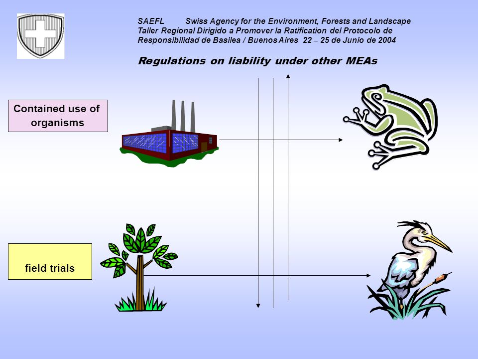 SAEFLSwiss Agency for the Environment, Forests and Landscape Taller Regional Dirigido a Promover la Ratification del Protocolo de Responsibilidad de Basilea / Buenos Aires 22 – 25 de Junio de 2004 Regulations on liability under other MEAs Contained use of organisms field trials