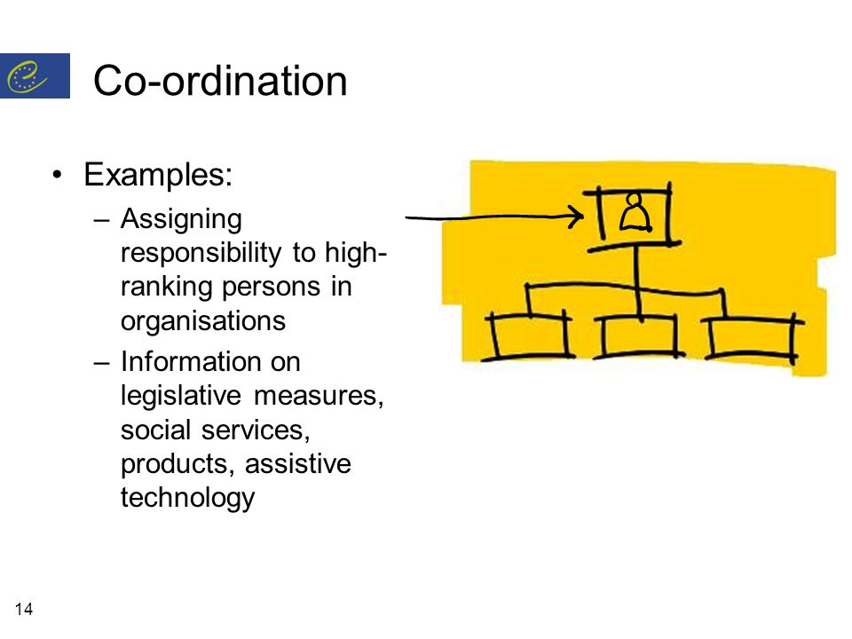 14 Co-ordination Examples: –Assigning responsibility to high- ranking persons in organisations –Information on legislative measures, social services, products, assistive technology