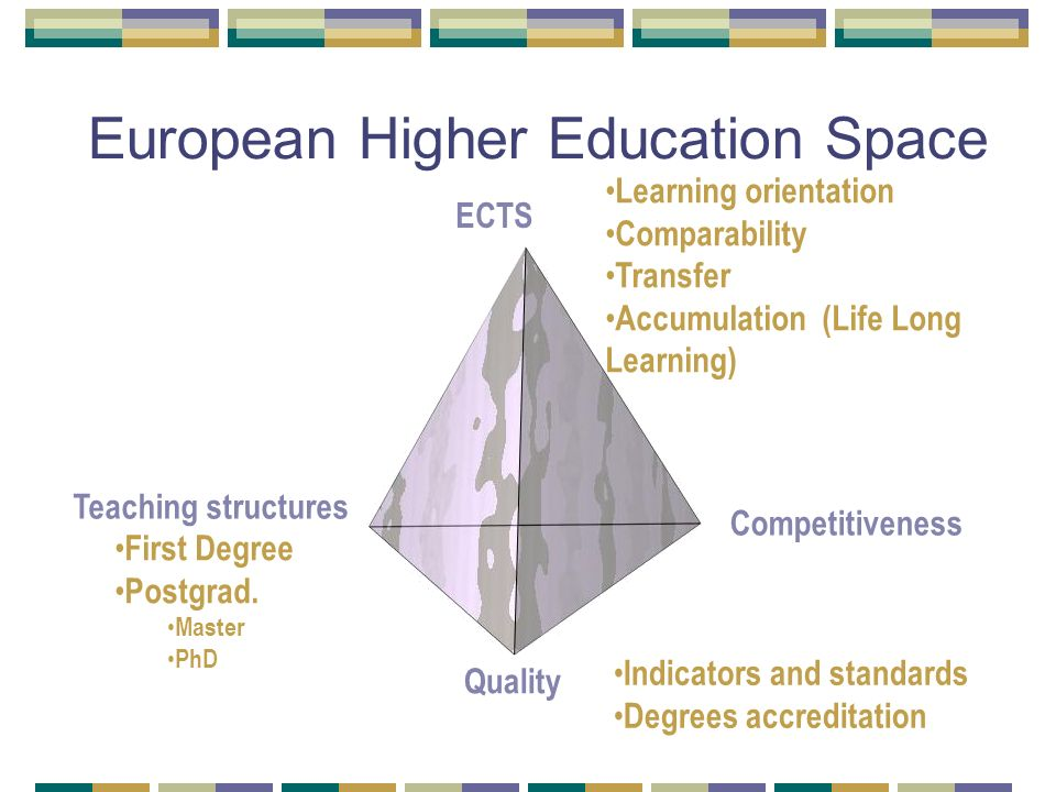 European Higher Education Space Competitiveness Quality Teaching structures First Degree Postgrad.