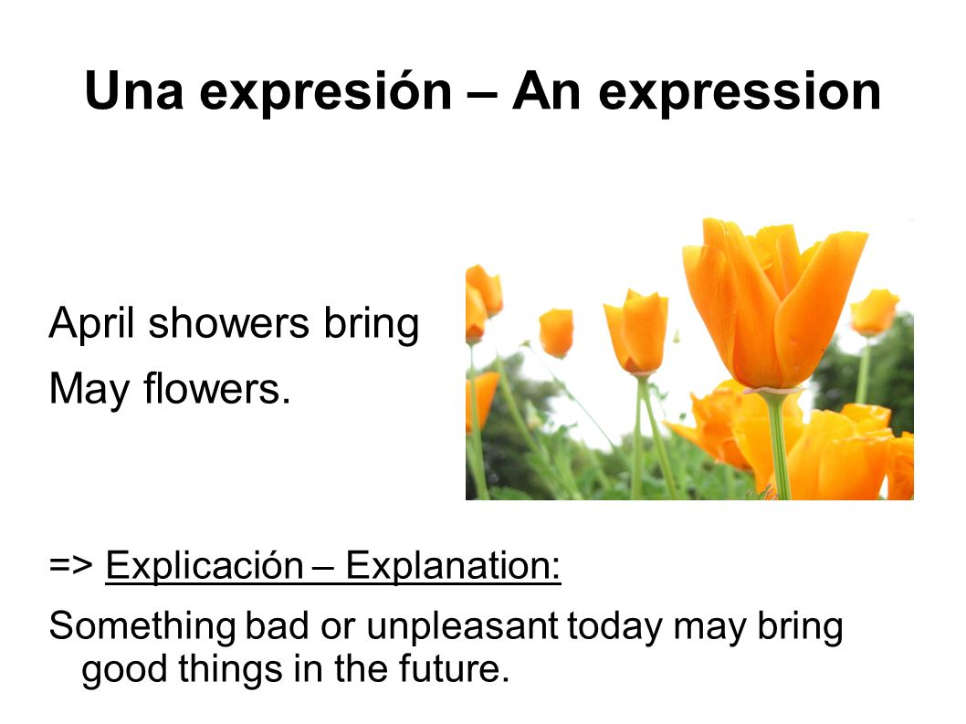 Una expresión – An expression April showers bring May flowers.