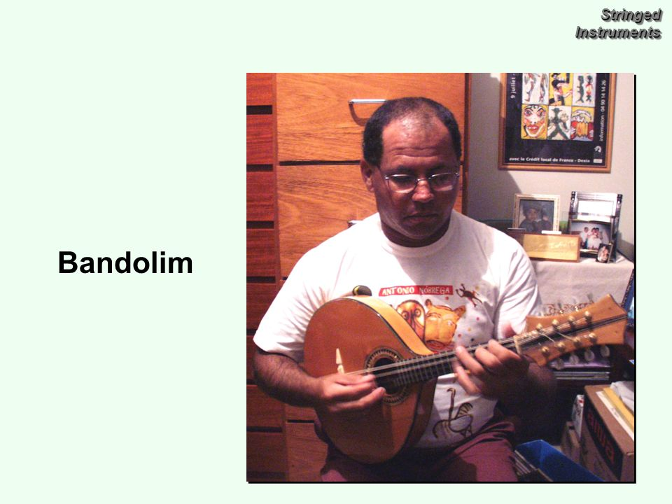Stringed Instruments Bandolim