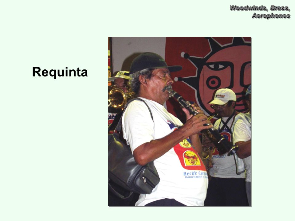 Woodwinds, Brass, Aerophones Requinta