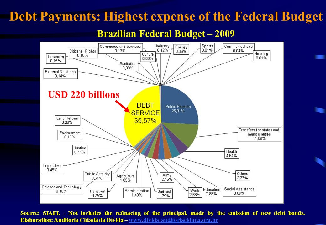 Debt Payments: Highest expense of the Federal Budget Brazilian Federal Budget – 2009 USD 220 billions Source: SIAFI.