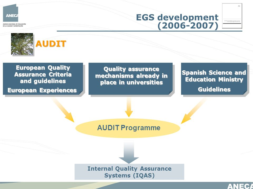 Spanish Science and Education Ministry Guidelines Quality assurance mechanisms already in place in universities European Quality Assurance Criteria and guidelines European Experiences AUDIT Programme Internal Quality Assurance Systems (IQAS) EGS development ( ) AUDIT