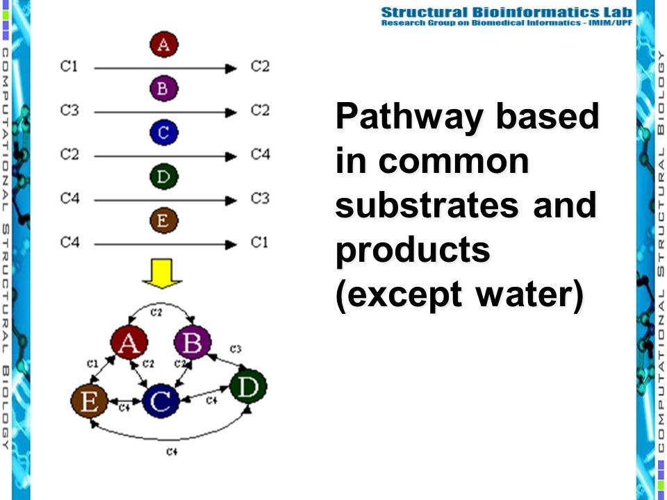 Pathway based in common substrates and products (except water)