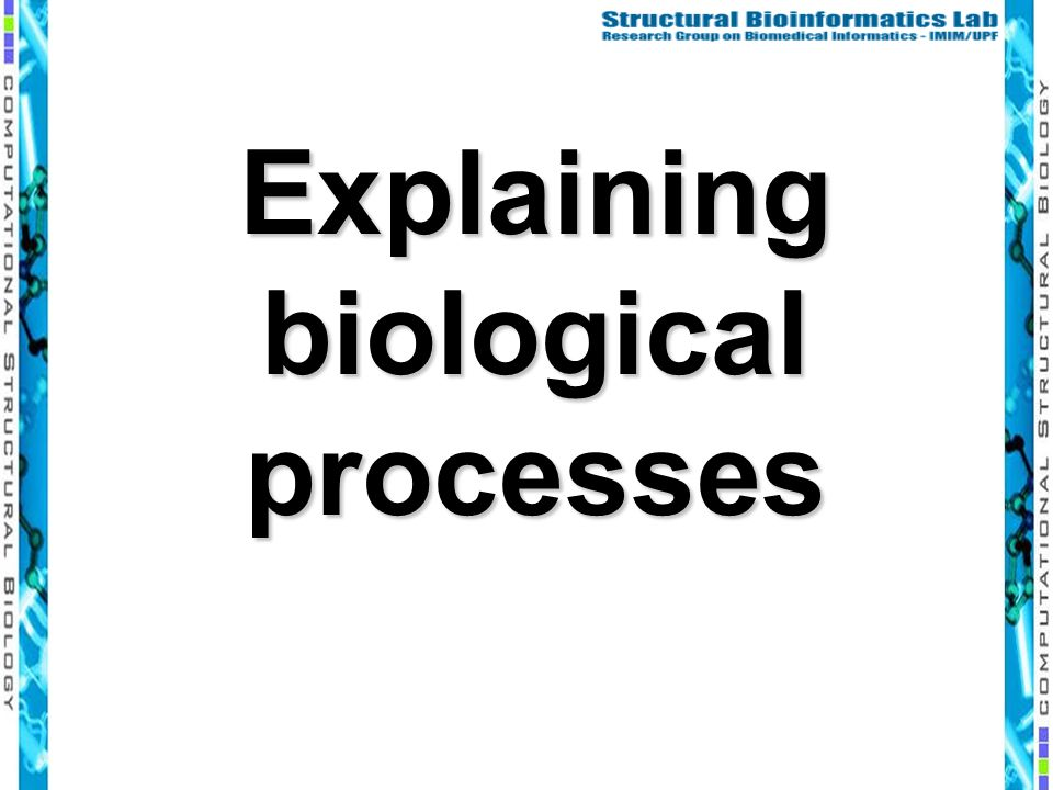 Explaining biological processes