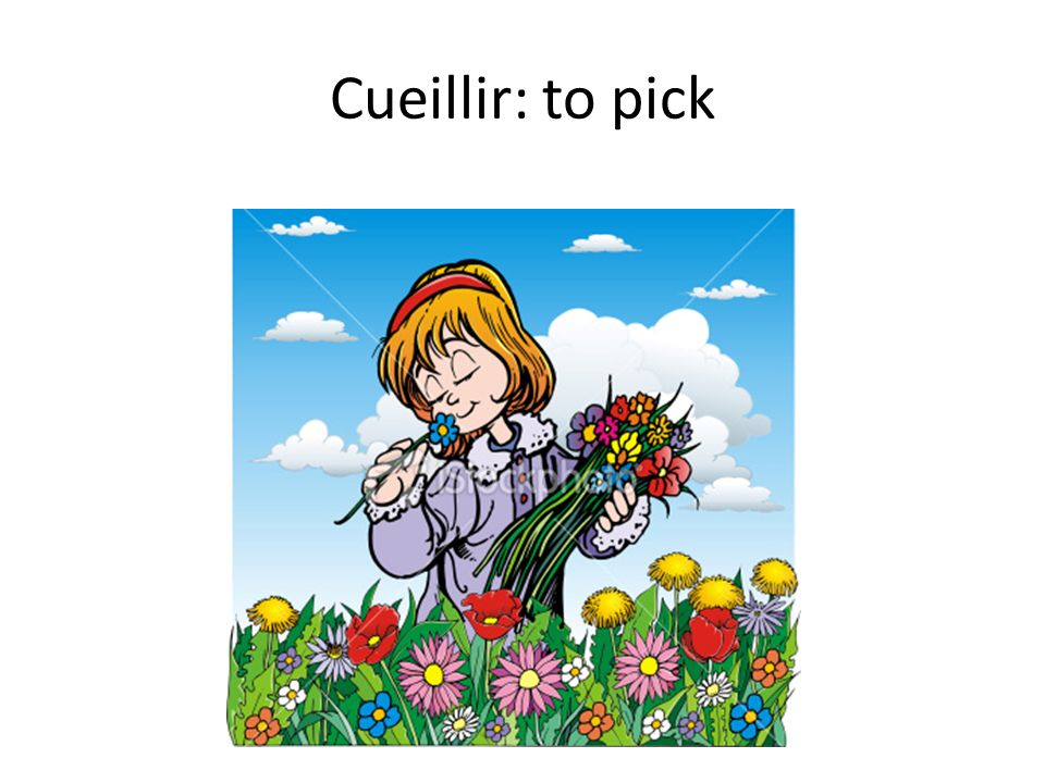 Cueillir: to pick