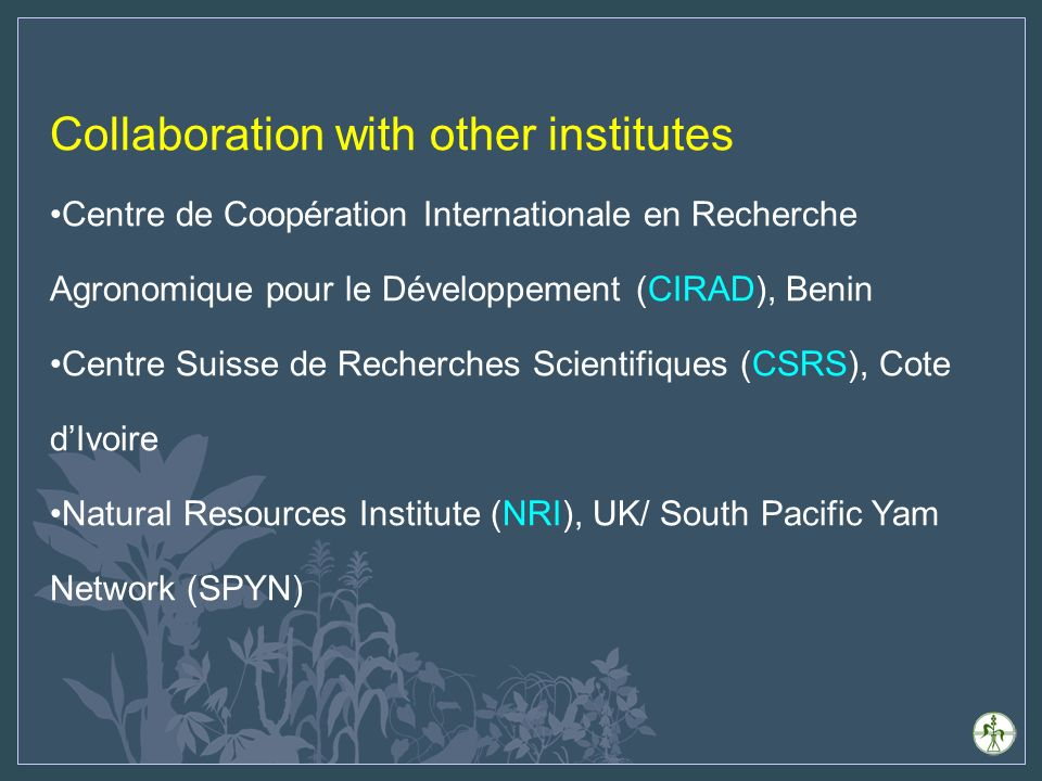 Collaboration with other institutes Centre de Coopération Internationale en Recherche Agronomique pour le Développement (CIRAD), Benin Centre Suisse de Recherches Scientifiques (CSRS), Cote dIvoire Natural Resources Institute (NRI), UK/ South Pacific Yam Network (SPYN)