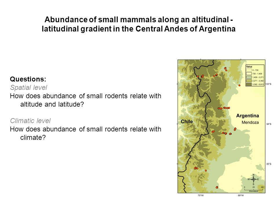 Questions: Spatial level How does abundance of small rodents relate with altitude and latitude.