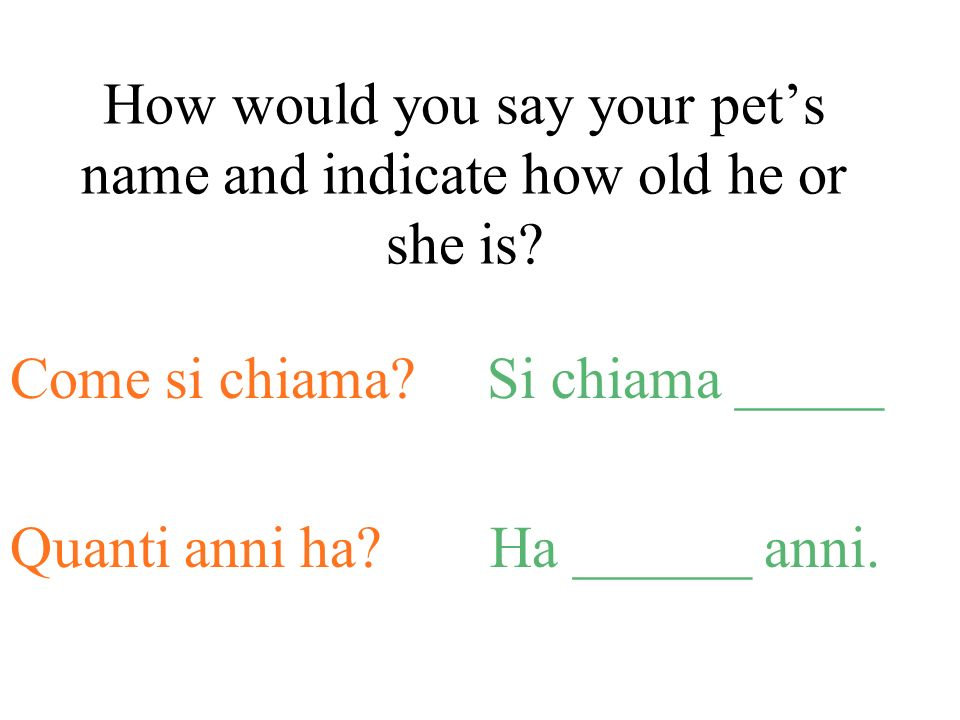 How would you say your pets name and indicate how old he or she is.