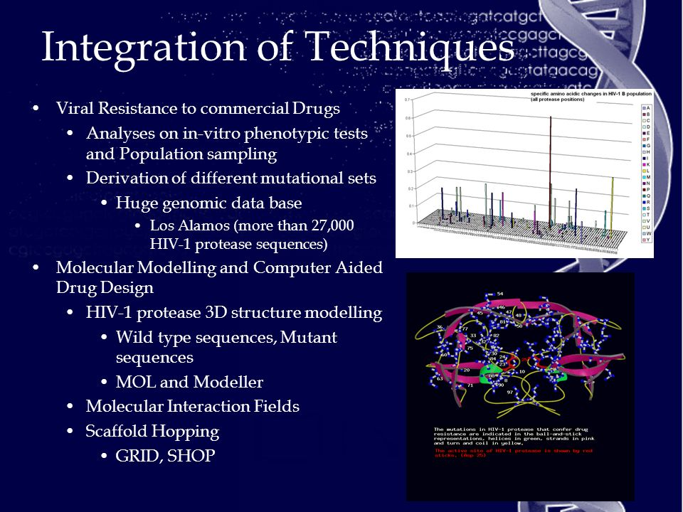 Integration of Techniques Viral Resistance to commercial Drugs Analyses on in-vitro phenotypic tests and Population sampling Derivation of different mutational sets Huge genomic data base Los Alamos (more than 27,000 HIV-1 protease sequences) Molecular Modelling and Computer Aided Drug Design HIV-1 protease 3D structure modelling Wild type sequences, Mutant sequences MOL and Modeller Molecular Interaction Fields Scaffold Hopping GRID, SHOP