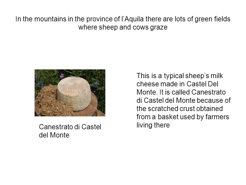 In the mountains in the province of lAquila there are lots of green fields where sheep and cows graze This is a typical sheeps milk cheese made in Castel Del Monte.