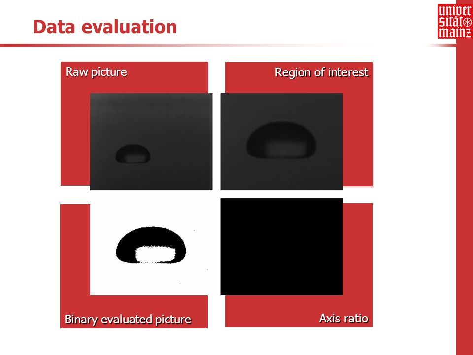 Binary evaluated picture Region of interest Raw picture Data evaluation