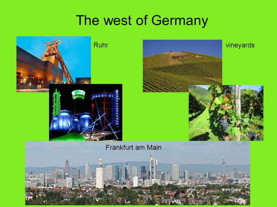 The west of Germany Ruhrvineyards Frankfurt am Main