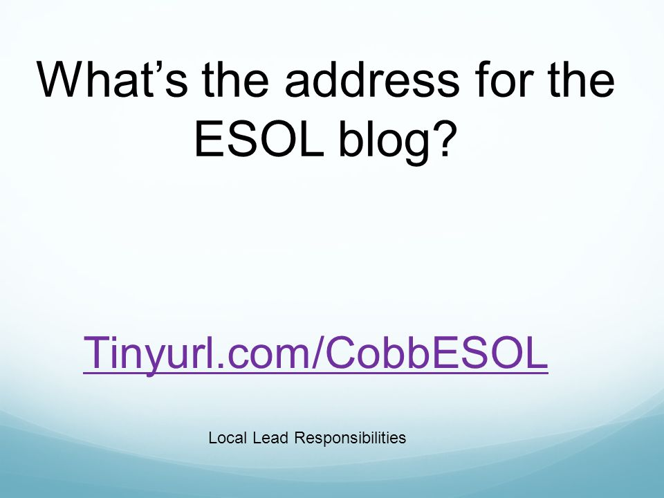 Tinyurl.com/CobbESOL Whats the address for the ESOL blog Local Lead Responsibilities