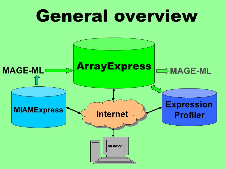 General overview ArrayExpress MIAMExpress Expression Profiler MAGE-ML Internet www MAGE-ML