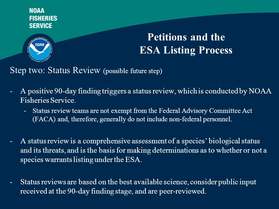 5 Petitions and the ESA Listing Process Step two: Status Review (possible future step) -A positive 90-day finding triggers a status review, which is conducted by NOAA Fisheries Service.