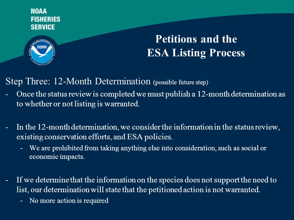 6 Petitions and the ESA Listing Process Step Three: 12-Month Determination (possible future step) -Once the status review is completed we must publish a 12-month determination as to whether or not listing is warranted.