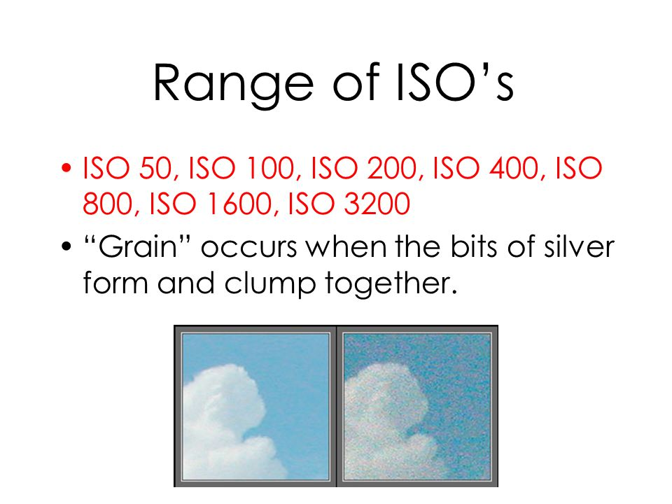 Range of ISOs ISO 50, ISO 100, ISO 200, ISO 400, ISO 800, ISO 1600, ISO 3200 Grain occurs when the bits of silver form and clump together.