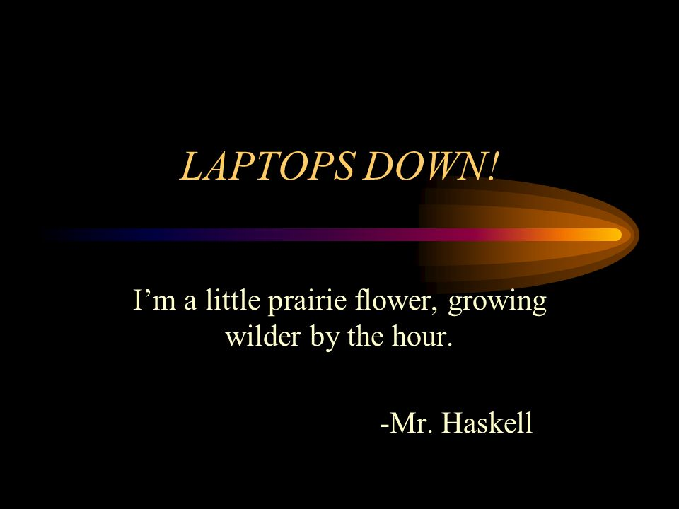 LAPTOPS DOWN! Im a little prairie flower, growing wilder by the hour. -Mr. Haskell