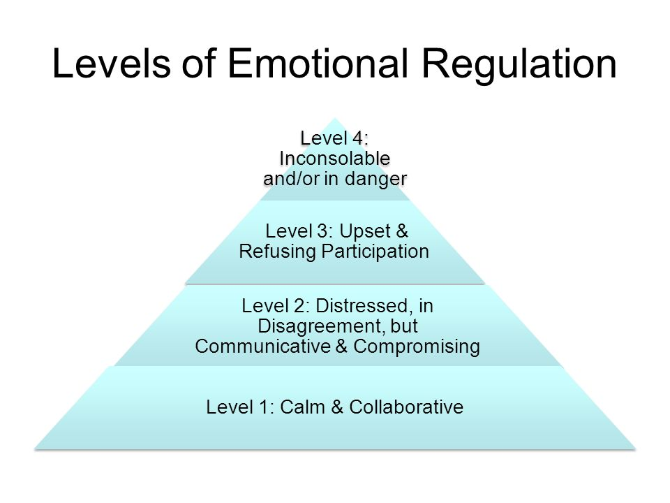 Levels of Emotional Regulation Level 4: Inconsolable and/or in danger Level 3: Upset & Refusing Participation Level 2: Distressed, in Disagreement, but Communicative & Compromising Level 1: Calm & Collaborative