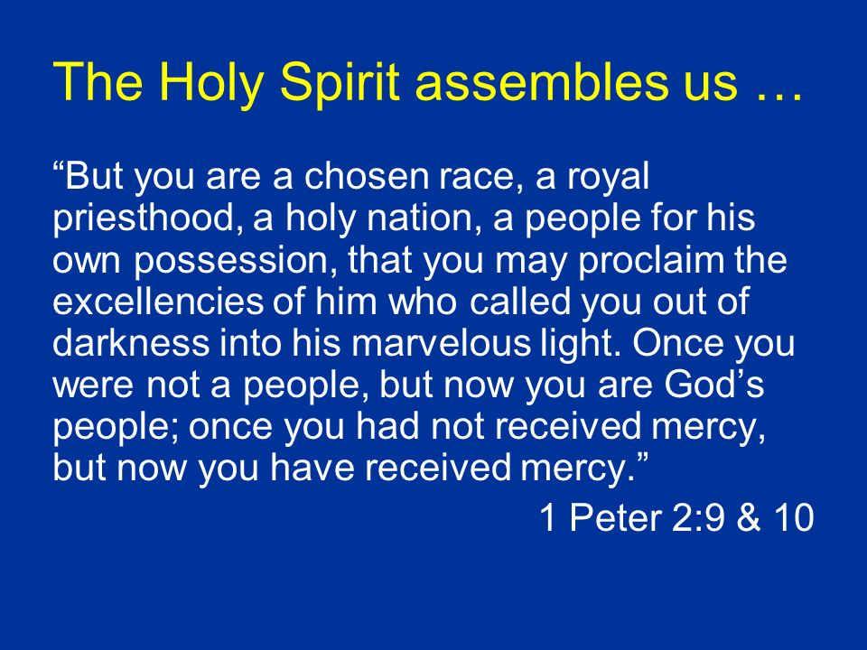The Holy Spirit assembles us … But you are a chosen race, a royal priesthood, a holy nation, a people for his own possession, that you may proclaim the excellencies of him who called you out of darkness into his marvelous light.