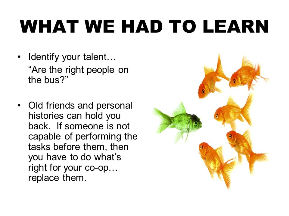 WHAT WE HAD TO LEARN Identify your talent… Are the right people on the bus.