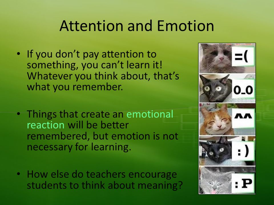 Attention and Emotion If you dont pay attention to something, you cant learn it.