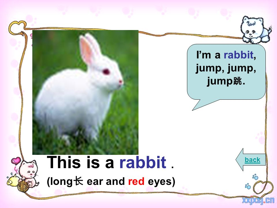 This is a rabbit. (long ear and red eyes) back Im a rabbit, jump, jump, jump.