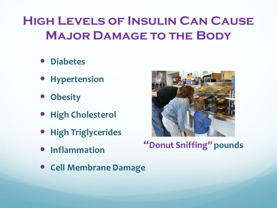 High Levels of Insulin Can Cause Major Damage to the Body Diabetes Hypertension Obesity High Cholesterol High Triglycerides Inflammation Cell Membrane Damage Donut Sniffing pounds