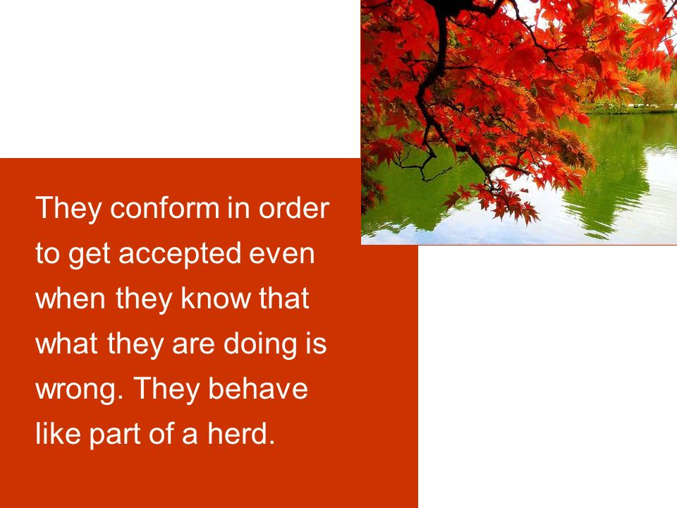 They conform in order to get accepted even when they know that what they are doing is wrong.