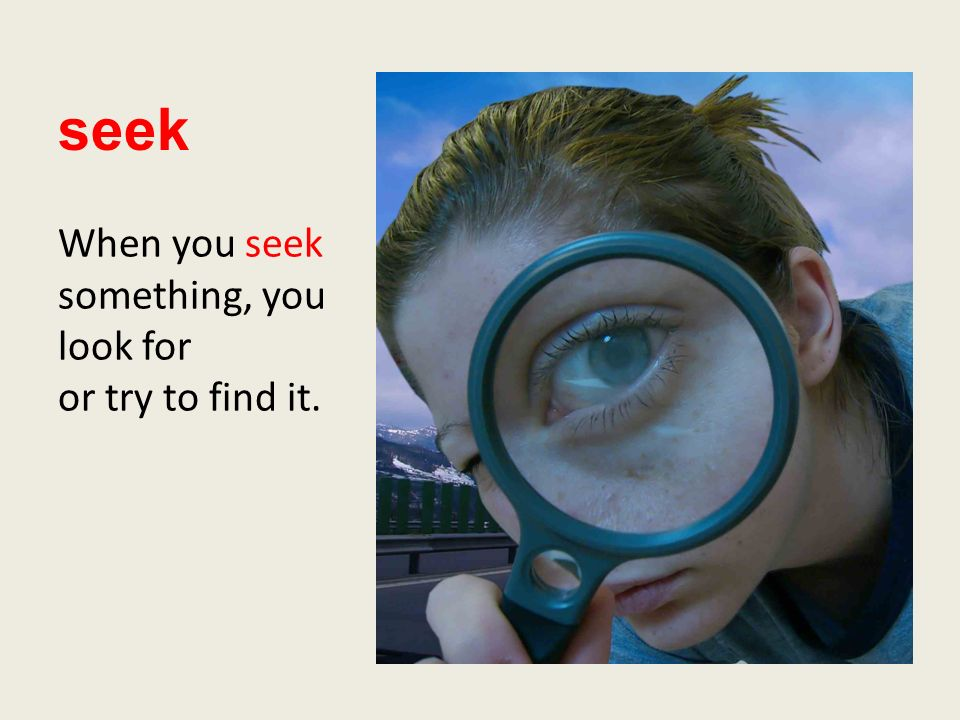 seek When you seek something, you look for or try to find it.