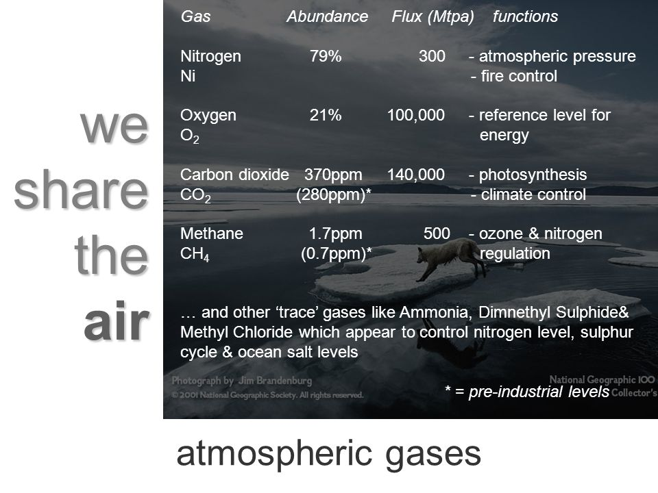 we share the air atmospheric gases Gas Abundance Flux (Mtpa) functions Nitrogen 79% 300 - atmospheric pressure Ni - fire control Oxygen 21% 100,000 - reference level for O 2 energy Carbon dioxide 370ppm 140,000 - photosynthesis CO 2 (280ppm)* - climate control Methane 1.7ppm 500 - ozone & nitrogen CH 4 (0.7ppm)* regulation … and other trace gases like Ammonia, Dimnethyl Sulphide& Methyl Chloride which appear to control nitrogen level, sulphur cycle & ocean salt levels * = pre-industrial levels