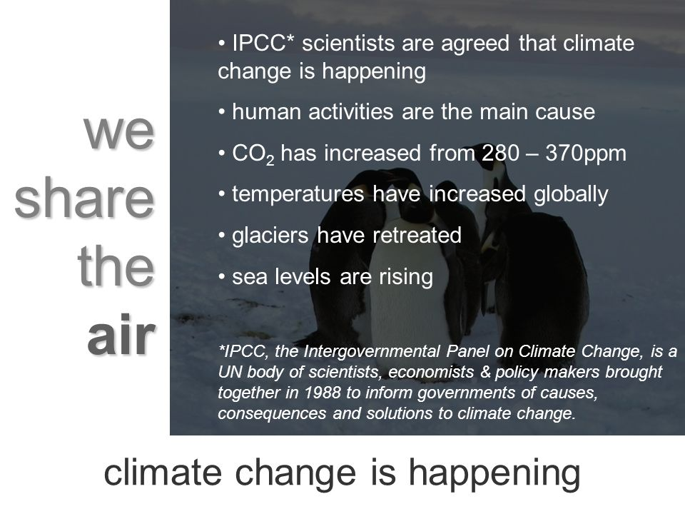 we share the air IPCC* scientists are agreed that climate change is happening human activities are the main cause CO 2 has increased from 280 – 370ppm temperatures have increased globally glaciers have retreated sea levels are rising *IPCC, the Intergovernmental Panel on Climate Change, is a UN body of scientists, economists & policy makers brought together in 1988 to inform governments of causes, consequences and solutions to climate change.