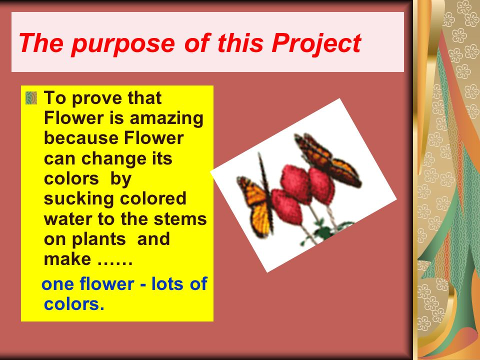 The purpose of this Project To prove that Flower is amazing because Flower can change its colors by sucking colored water to the stems on plants and make …… one flower - lots of colors.