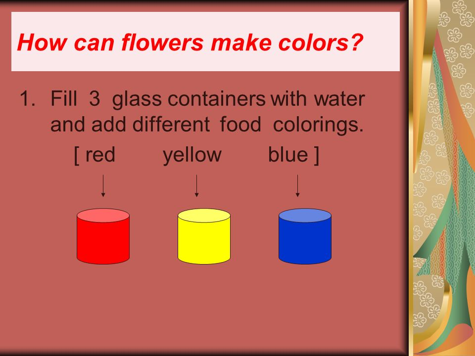 How can flowers make colors. 1.Fill 3 glass containers with water and add different food colorings.