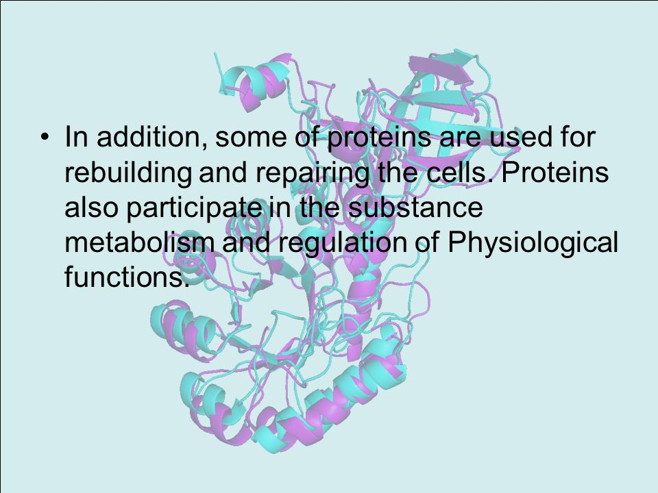In addition, some of proteins are used for rebuilding and repairing the cells.
