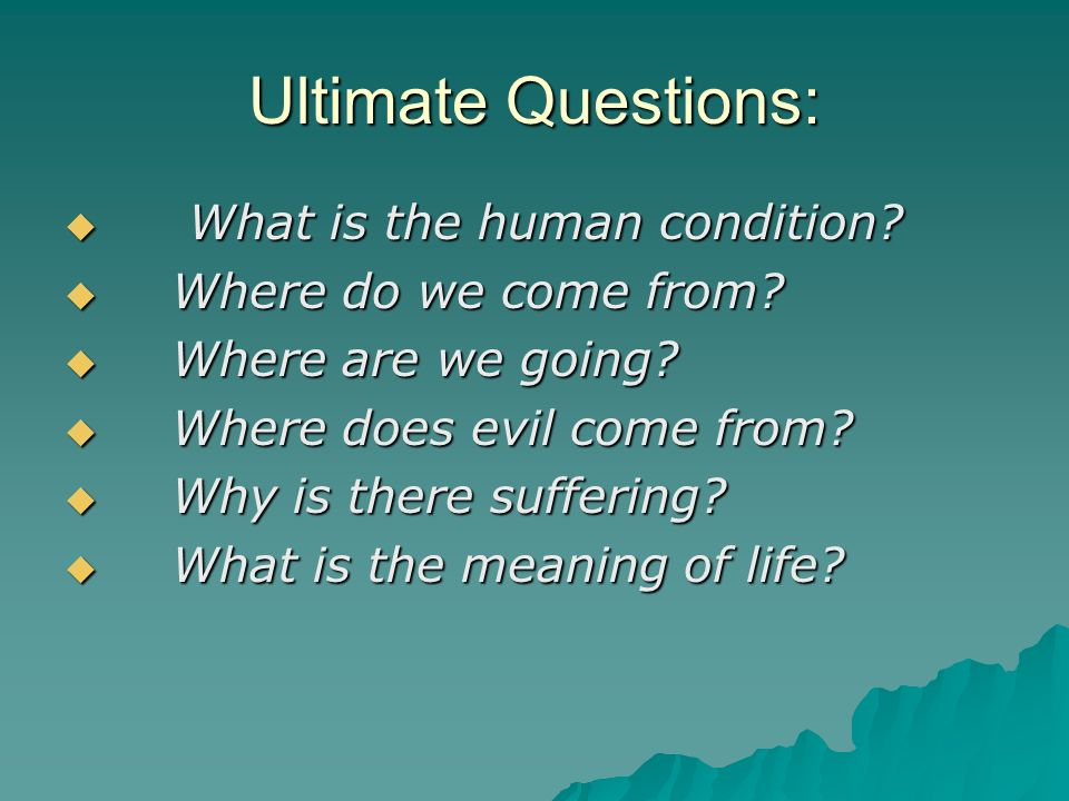 Ultimate Questions: What is the human condition. What is the human condition.
