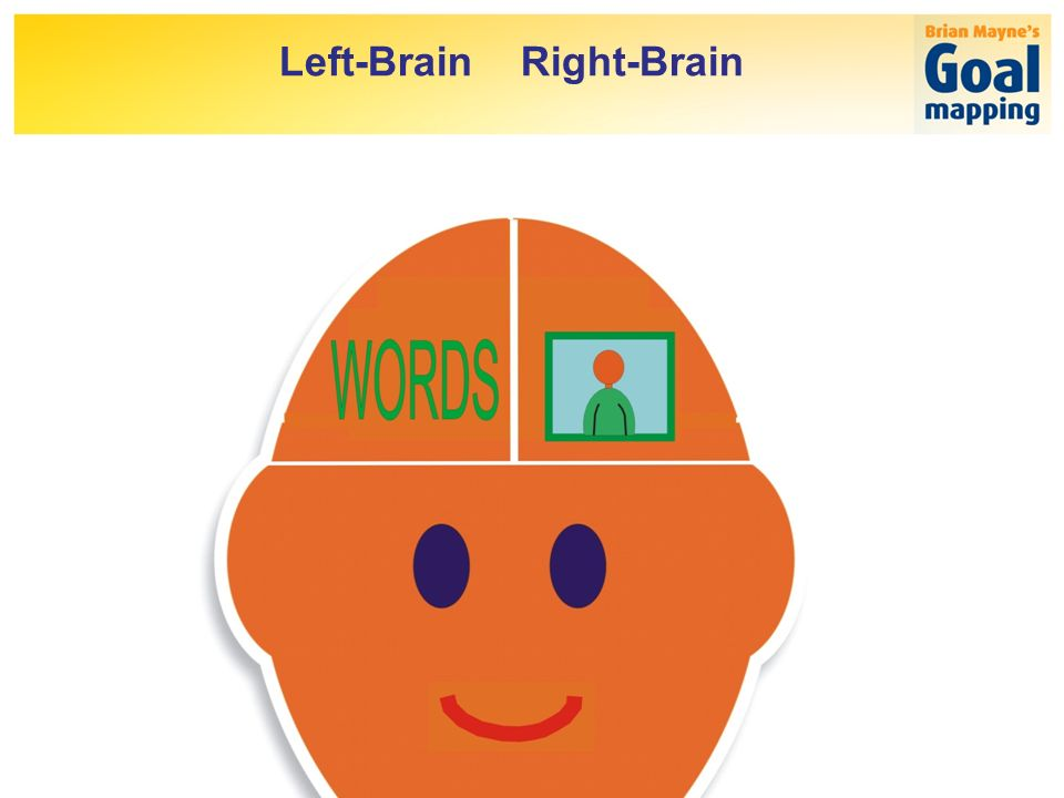 Left-Brain Right-Brain