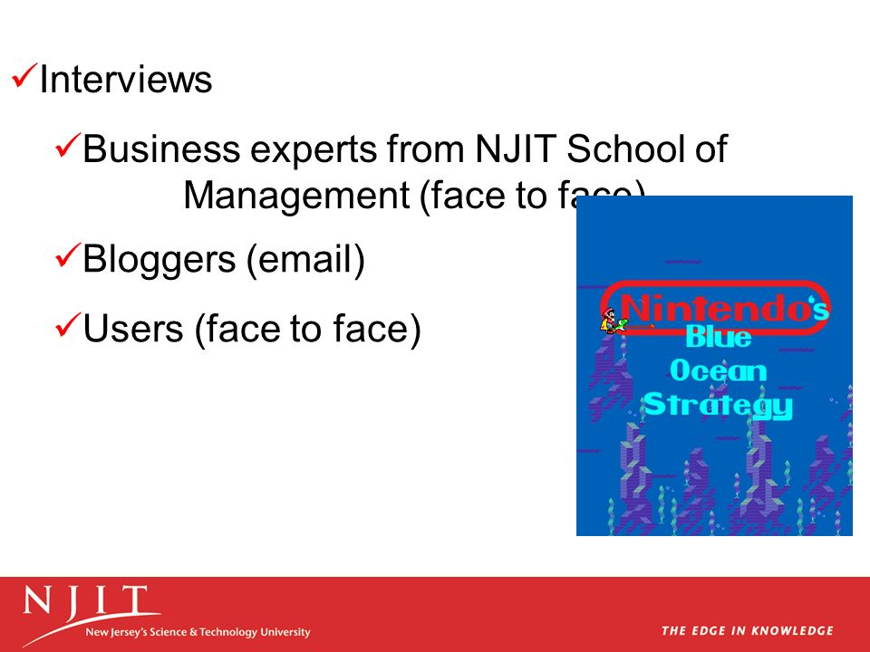 Interviews Business experts from NJIT School of Management (face to face) Bloggers ( ) Users (face to face)