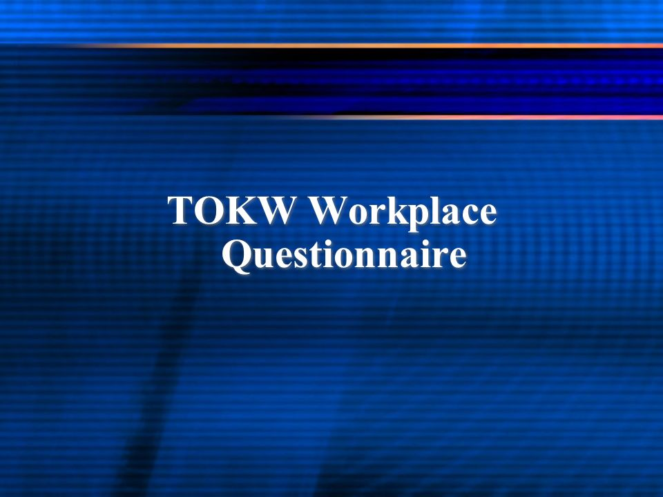 TOKW Workplace Questionnaire