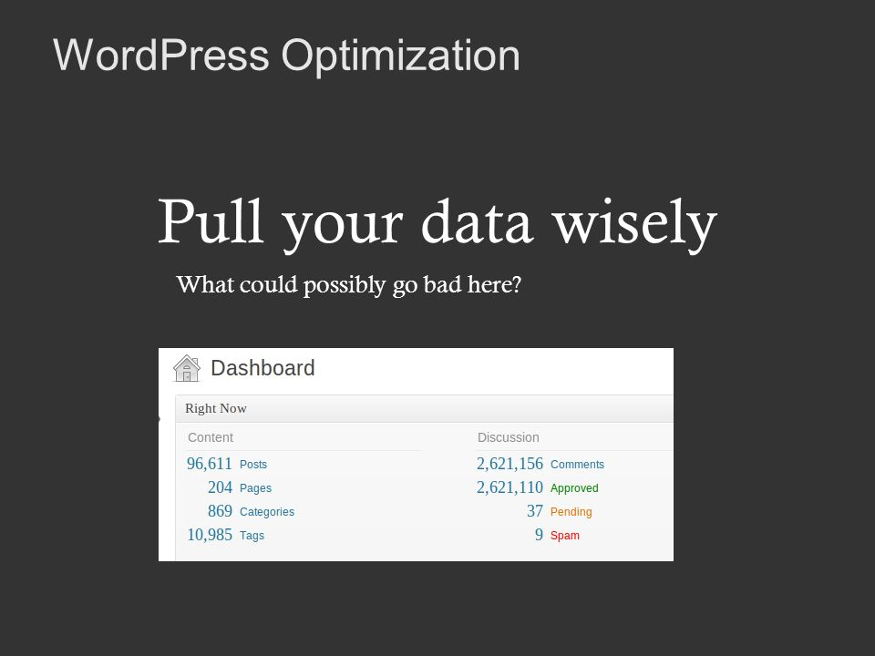 WordPress Optimization Pull your data wisely What could possibly go bad here