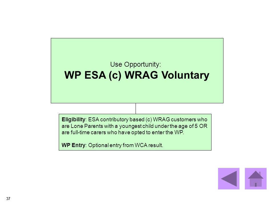 37 Use Opportunity: WP ESA (c) WRAG Voluntary Eligibility: ESA contributory based (c) WRAG customers who are Lone Parents with a youngest child under the age of 5 OR are full-time carers who have opted to enter the WP.