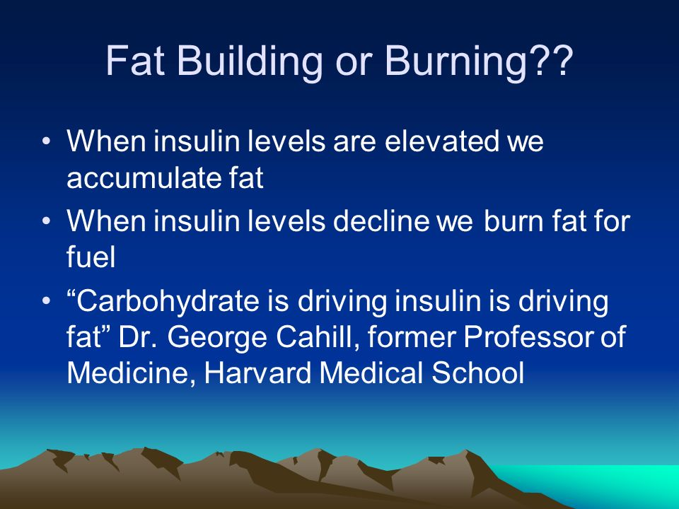 Fat Building or Burning .